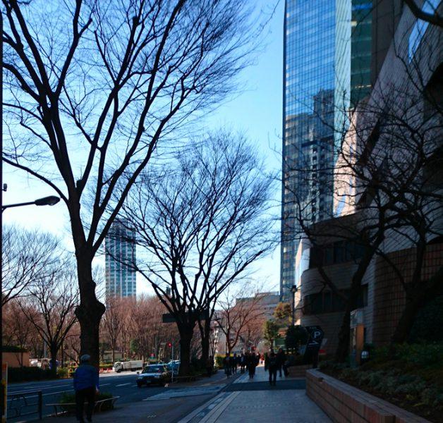 西新宿駅からセミナー会場までの散歩道